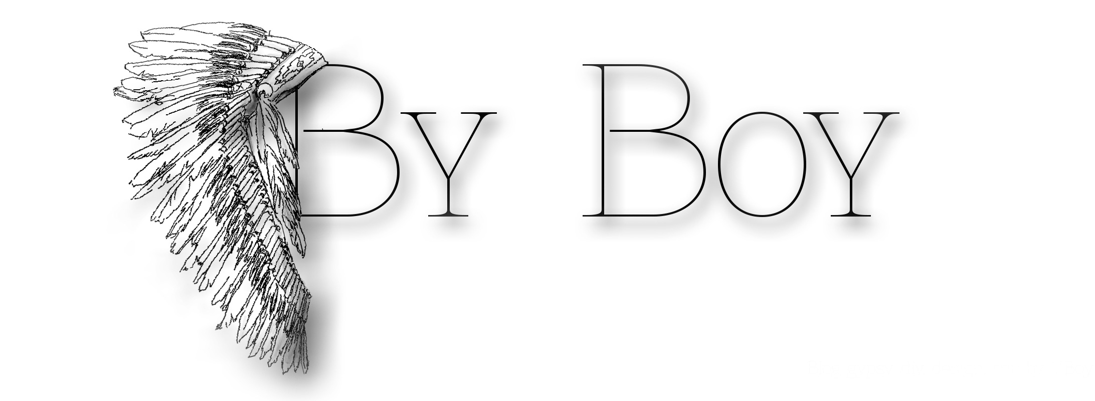 byboy-valerieboy-blog-indien-native-logo-transparent